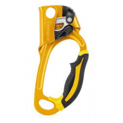 Petzl Ascension R