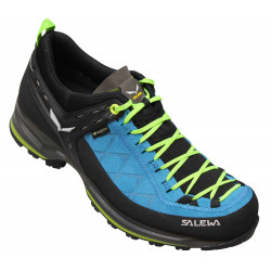 Salewa Mountain Trainer 2 Low GTX Men
